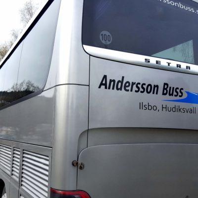 snefugl_buss